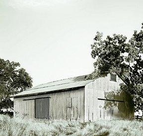 Tin Barn, Rural Sonoma County
